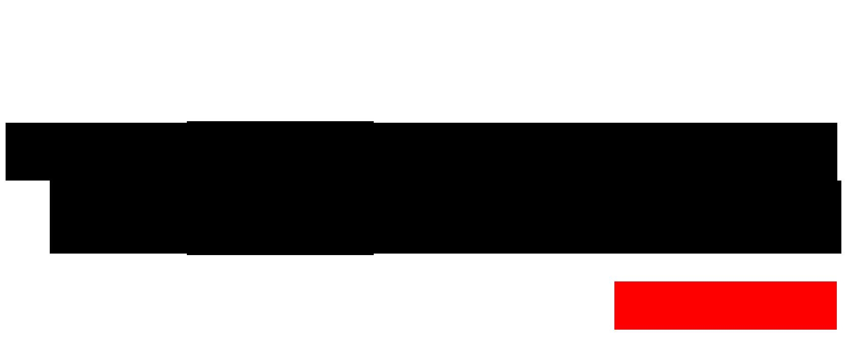 Logo TOTALE Maxi