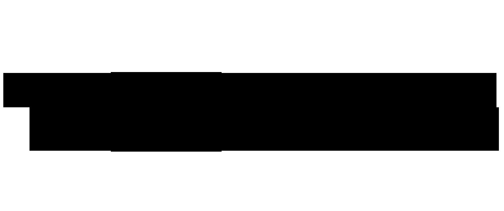 Logo TOTALE